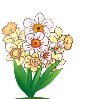 абстрактный-narcissus-предпосылки-над-белизной-25197340-min