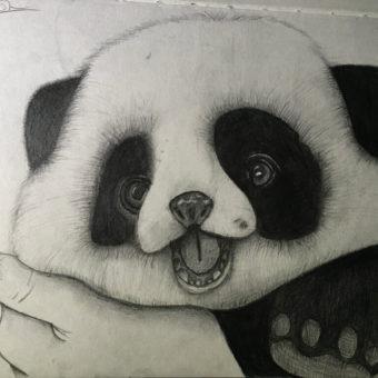 Baby-Panda-Image-Drawing-min