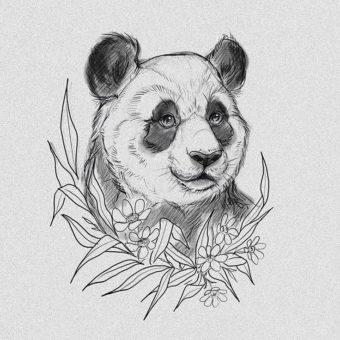 panda-drawing-pic-min