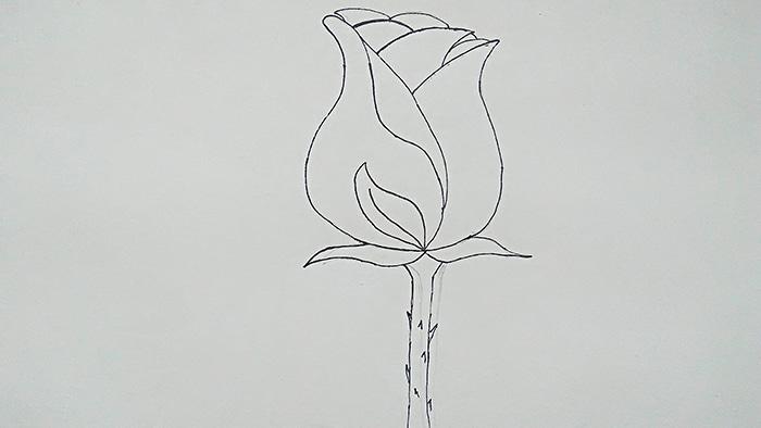Бутон розы 5