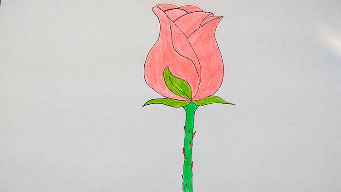 Бутон розы 6